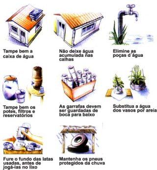dengue-combate.jpg