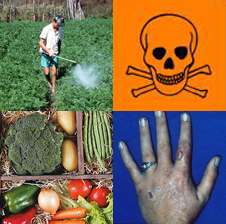 http://aldoadv.files.wordpress.com/2009/05/agrotoxicos.jpg