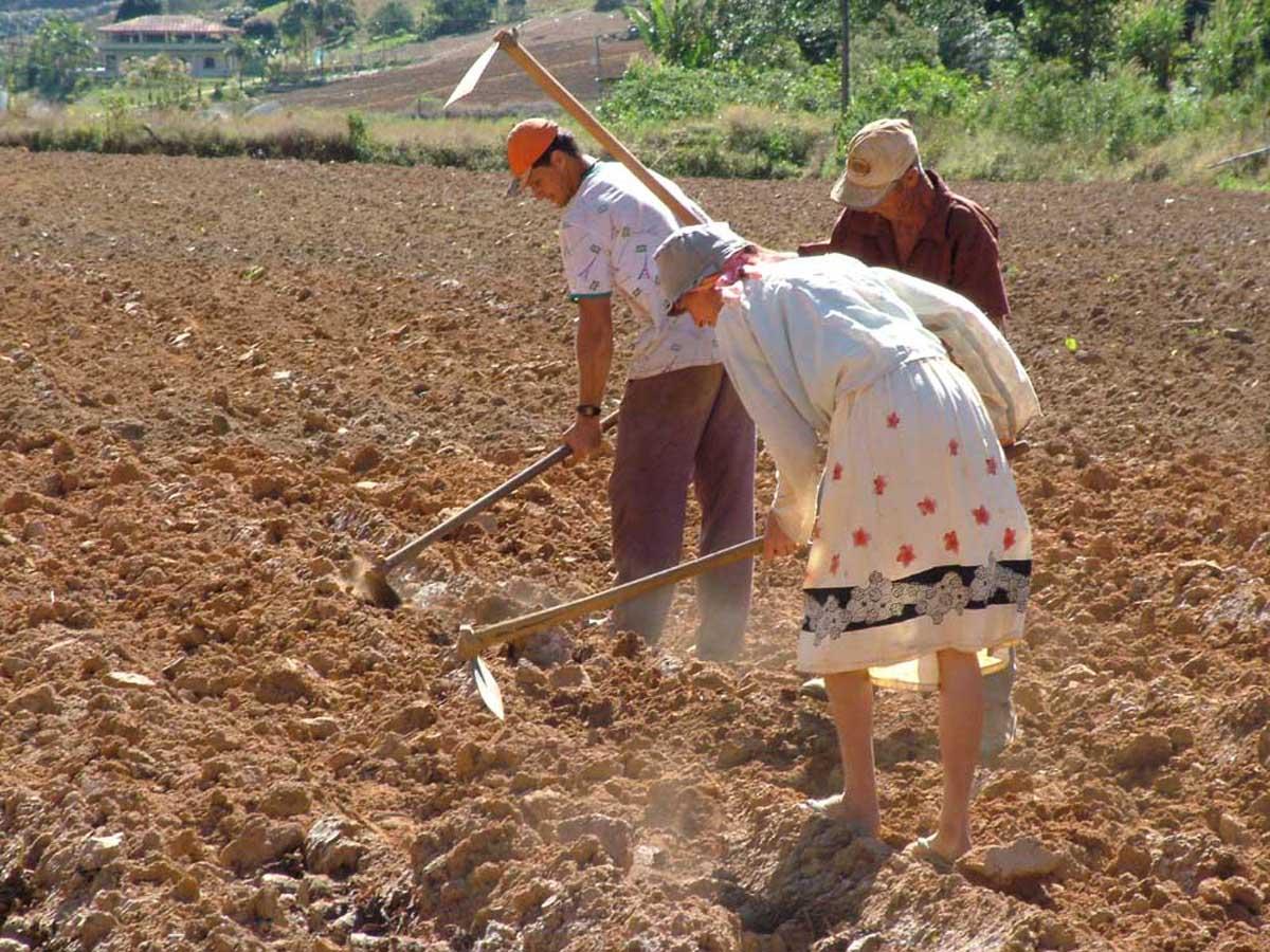 Resultado de imagem para agricultor rural